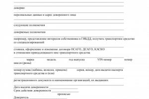 образец договора о представлении интересов в суде