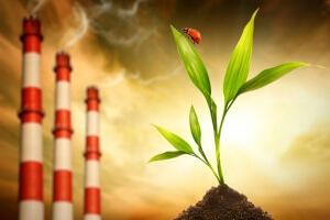 административная ответственность за экологические правонарушения
