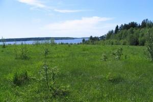 Как купить землю у государства под ИЖС