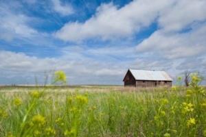 Сколько стоит и как провести оформление земельного участка в собственность