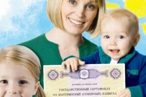 Где получить материнский сертификат