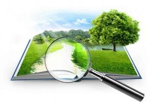 Как найти владельца земельного участка