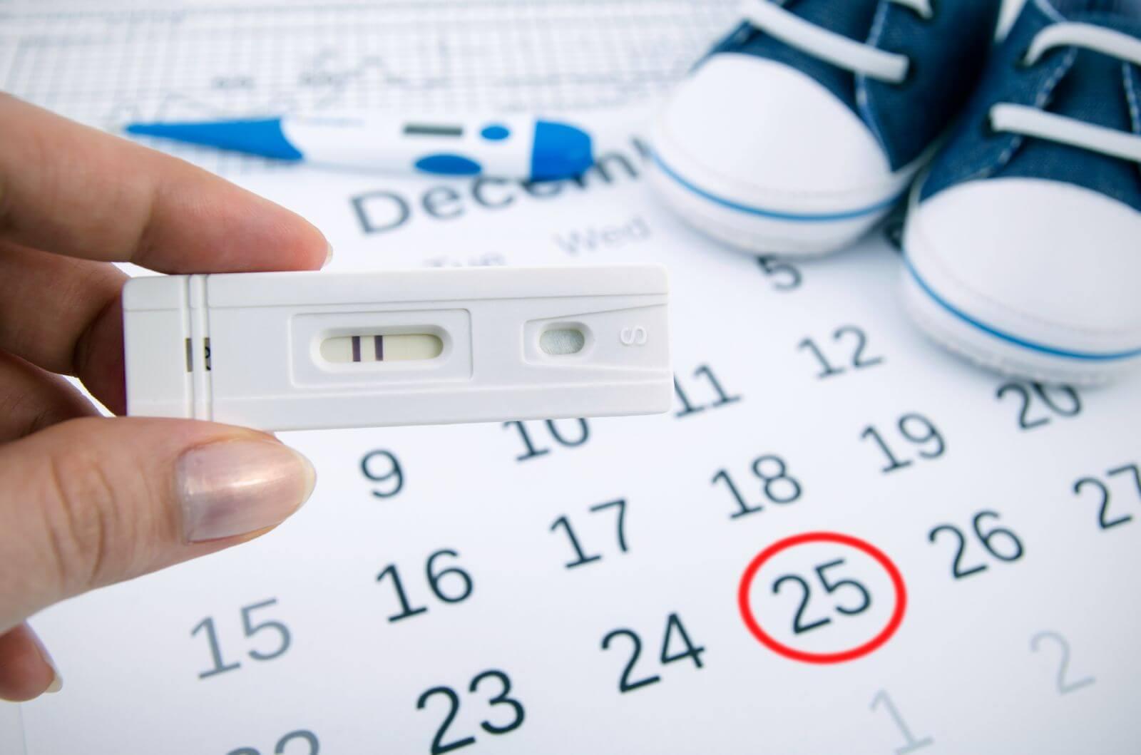 Календарь беременности рассчитать декретный отпуск