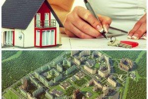 Как найти хозяина земельного участка