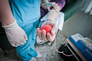 Процесс кровосдачи