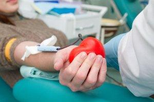 Что нужно чтобы сдать кровь на донорство: подготовка, проведение процедуры, привилегии и обязательства