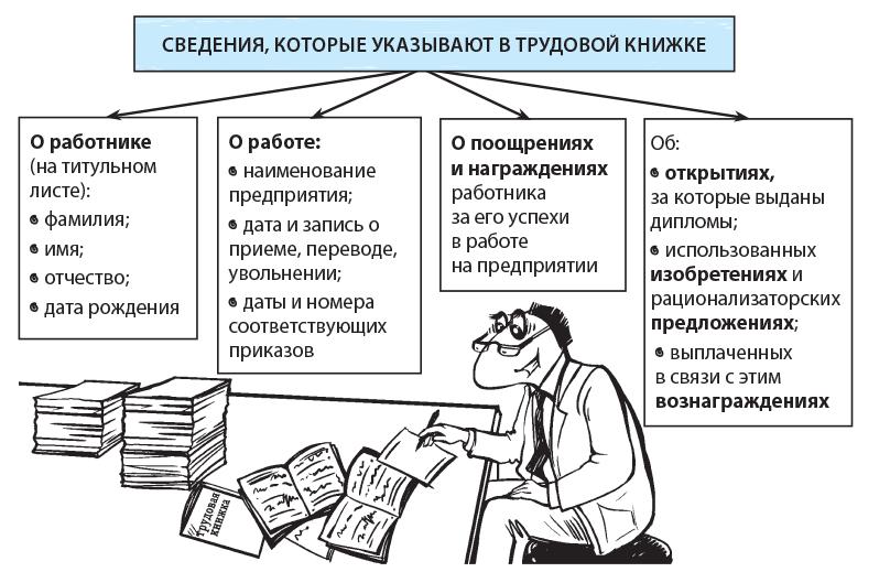 Сведения которые вносятся в трудовую книжку