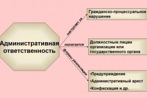 Сроки давности привлечения к административной ответственности: понятия и примеры