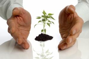 Помощь малому бизнесу от государства