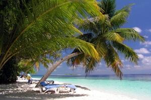 Изображение - Заявление на отпуск за свой счет 076-300x200
