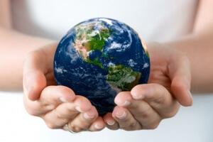 Уголовная ответственность за экологические преступления: понятие, виды, особенности