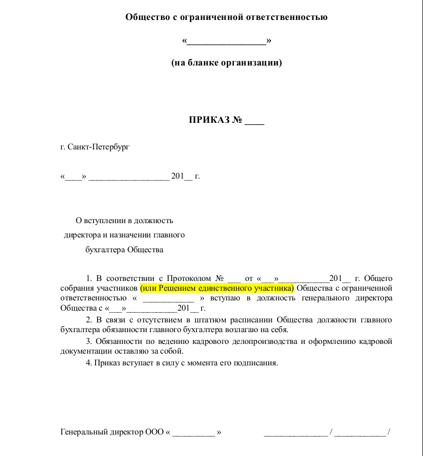 Форма приказа о назначении генерального директора бухгалтера ооо помощь бухгалтера челябинск
