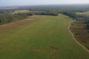 Что можно строить на сельхозугодиях? Фермерское хозяйство и личное использование земли