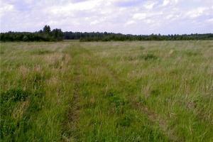 Что можно строить на сельхозугодиях