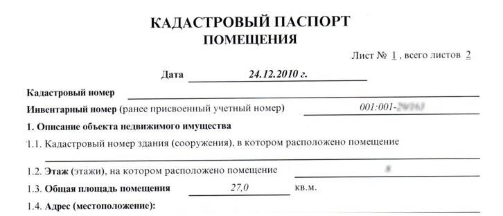 срок изготовления кадастрового паспорта