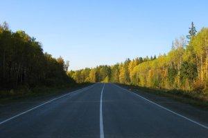 Что такое разделительная полоса на дороге, её значение и предназначение