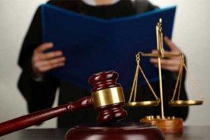Принципы выбора представителя в суде
