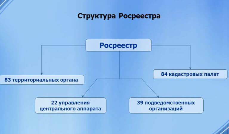 Структурированная схема Росреестра