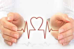 Принципы охраны здоровья