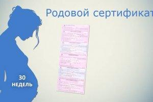 что дает родовой сертификат
